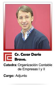 CESAR DARIO BRAVO